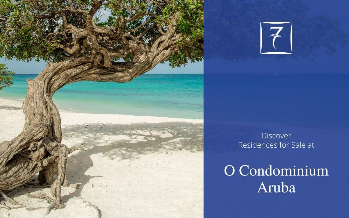 Discover residences for sale at O Condominium Aruba