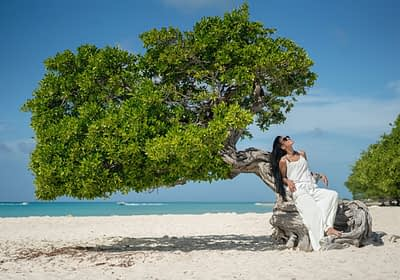 Woman reclining on a divi-divi tree in Aruba