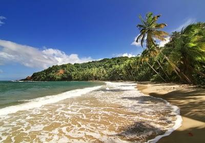 Beautiful beach in Dominica