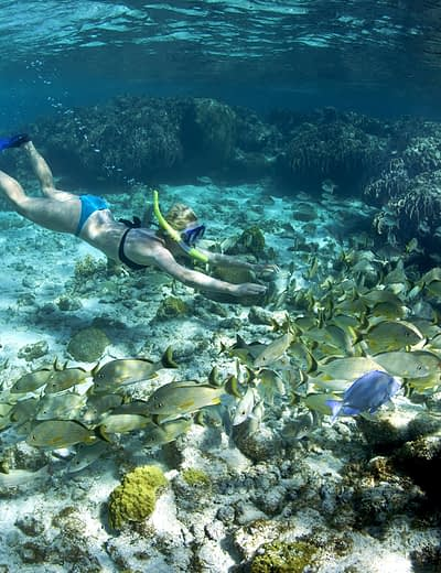 Woman diving in Belize
