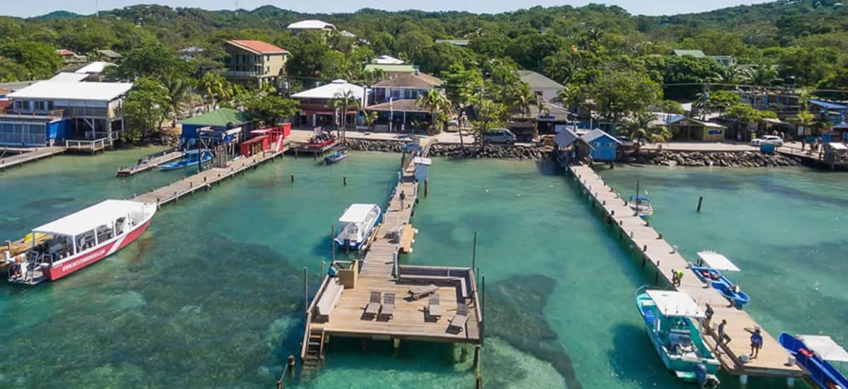 Dive resort for sale in West End